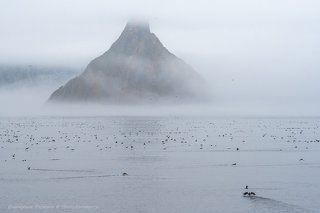 Призрачный остров