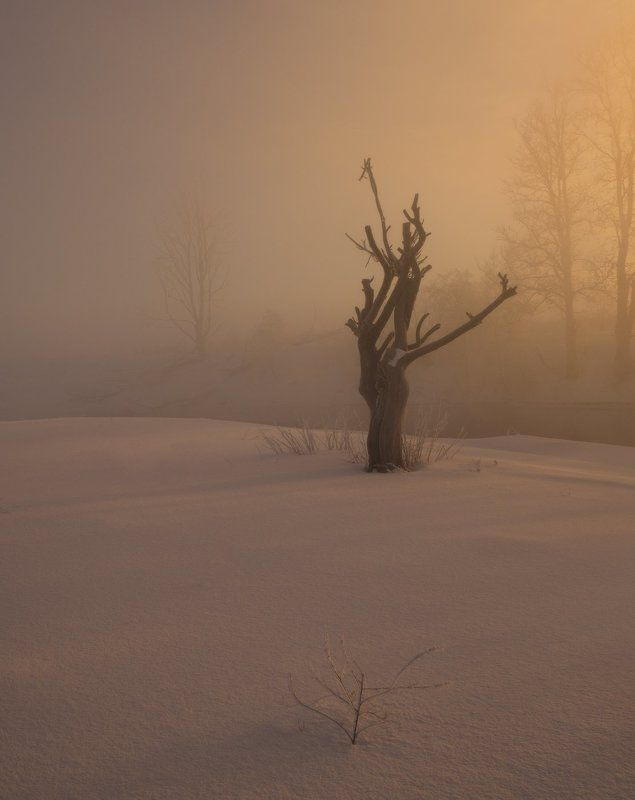 В зимнем состоянииphoto preview