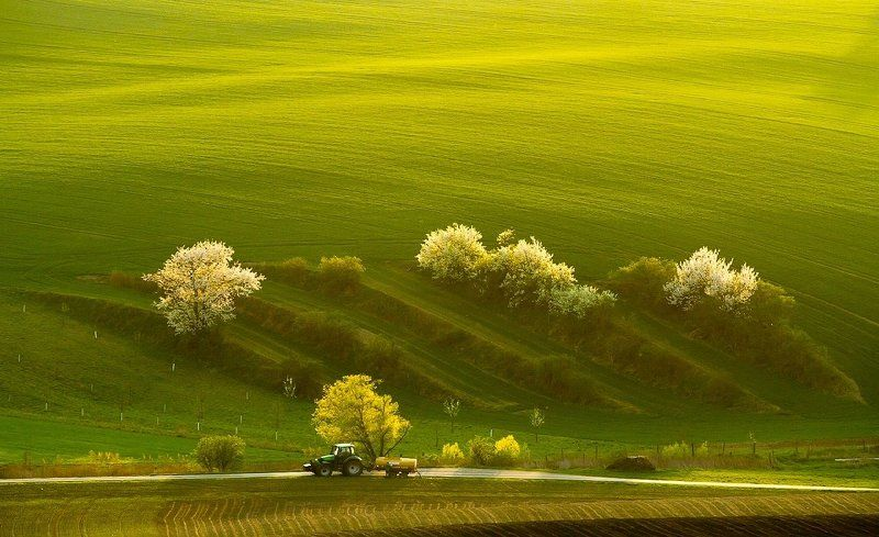 spring, tractor, field, landscape, green Spring tractorphoto preview
