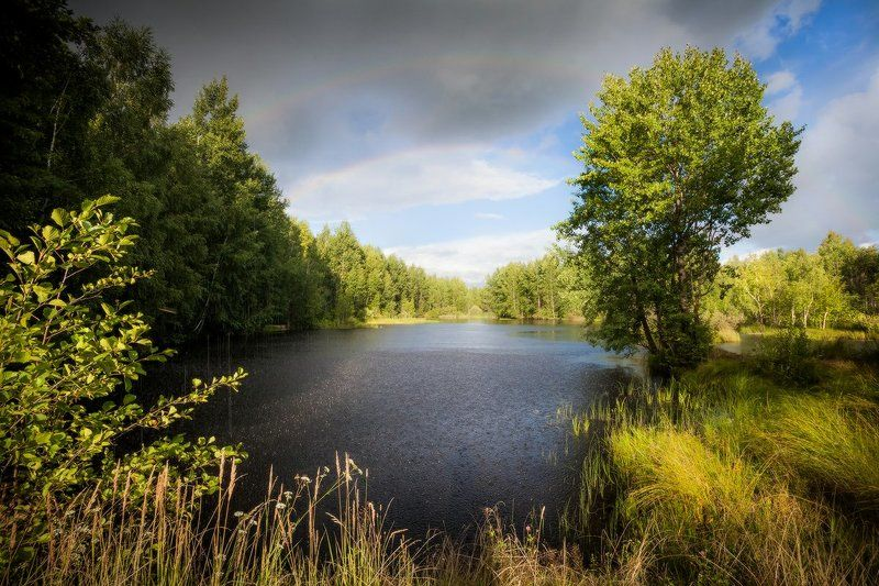 озеро, лес, радуга, ливень, вечер, благодать Летняя сказкаphoto preview