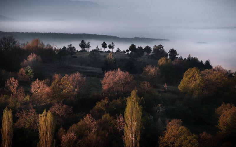 landscape, mist, fog, rain, sunrise, pirin, bulgaria, mountain, spring, light, haze, panorama, trees, forrest, hills Foggy Landschaftphoto preview