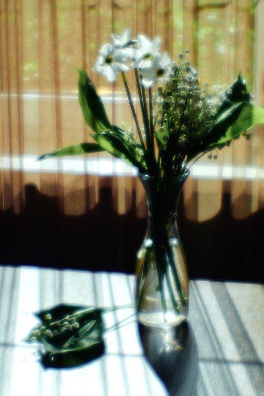 Солнечные тениphoto preview