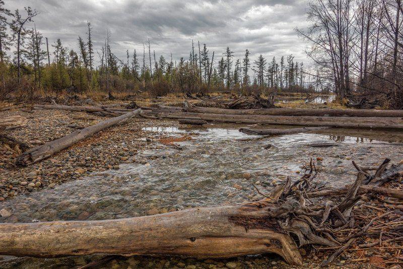 байкал, кабанья, река старое руслоphoto preview