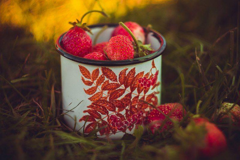 лето, клубника, ягоды, гелиос 44-2, деревня Дары летаphoto preview