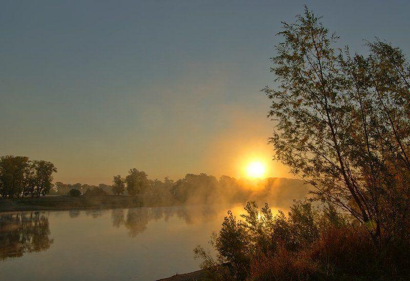 утро, река, восход, туман Утро. Сегодняphoto preview