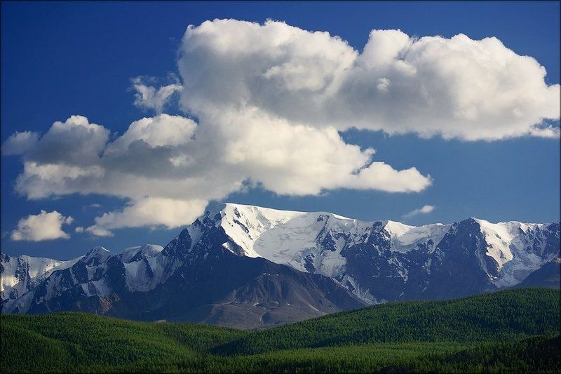 куркурек, алтай, снег, лето, горы, вершина Снега Куркурекаphoto preview