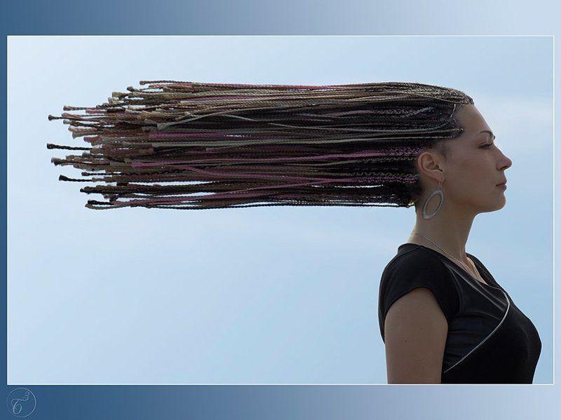 Windphoto preview