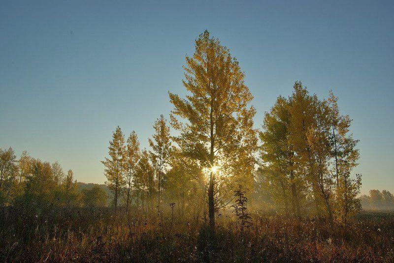 Осенний воздухphoto preview