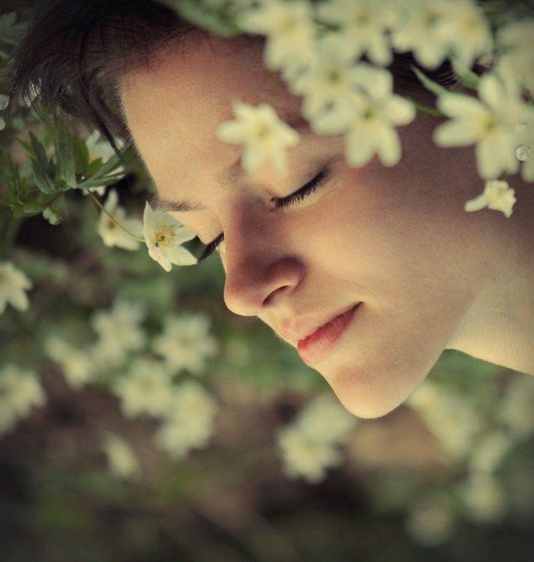 Сны весныphoto preview