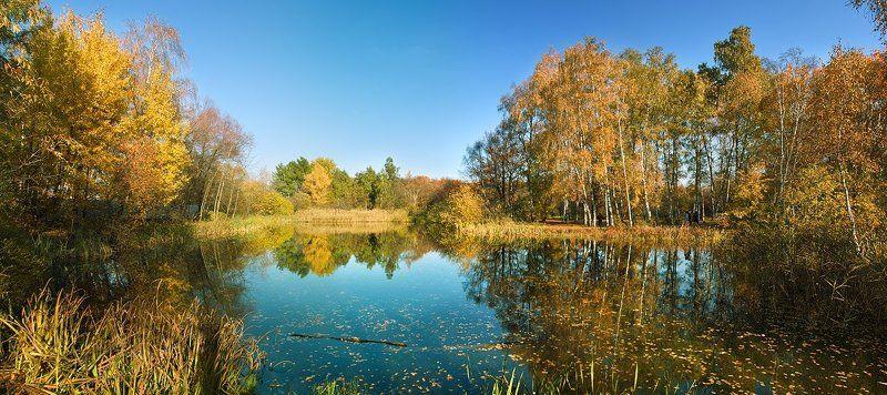 Осенняя палитраphoto preview