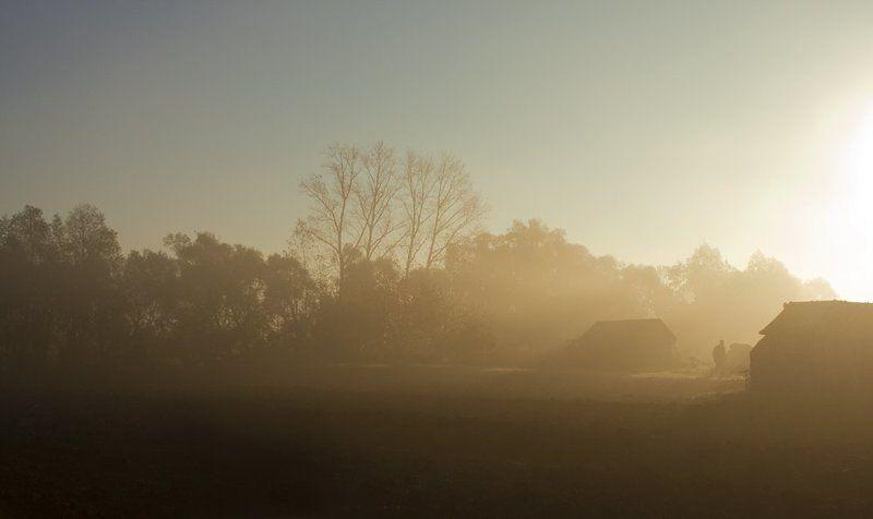 осень, утро, туман Утро. Туман...photo preview