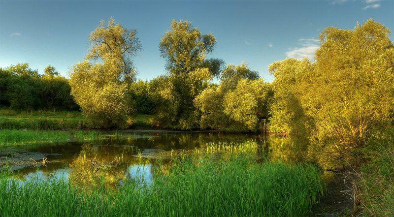 панорама, пейзаж, пруд, деревья photo preview