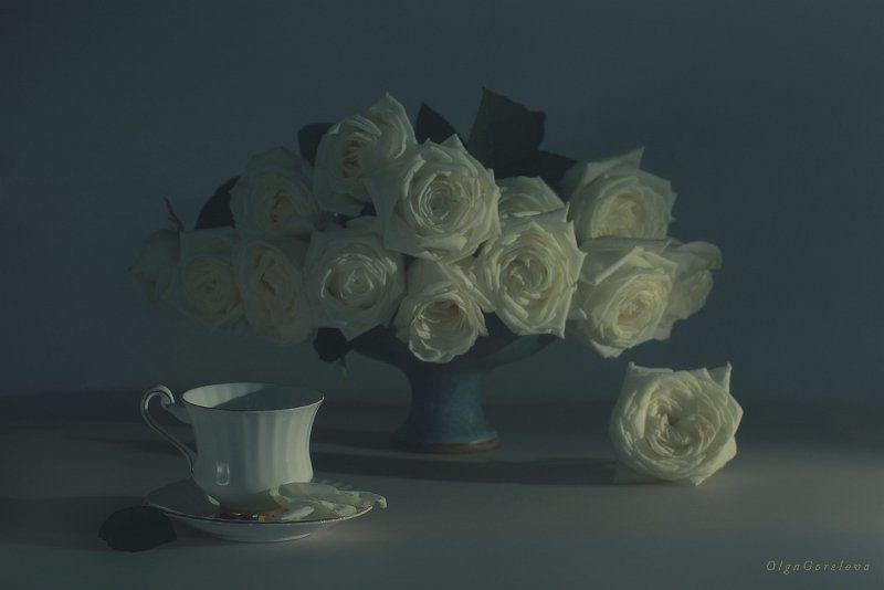 натюрморт, фото, белые, розы белые розыphoto preview