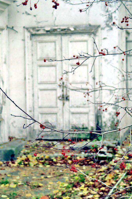 Двери в осеньphoto preview