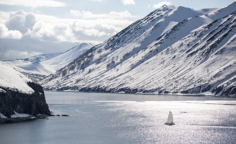 kamchatka, ocean, sunset, sealions, kosatka Kamchaphoto preview