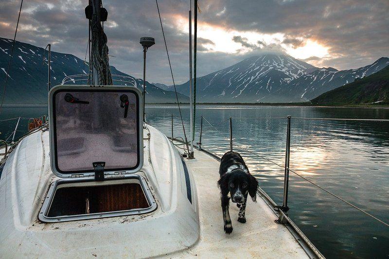 камчатка, яхта, путешествие,вилючинский вулкан, бухта,закат Камчатский морской волкphoto preview