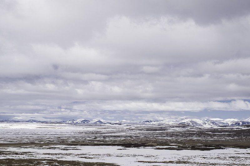 тундра, север, арктика Тундраphoto preview