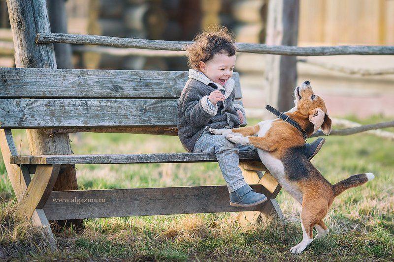 дети малыш мальчик щенок собака детская фотография photo preview