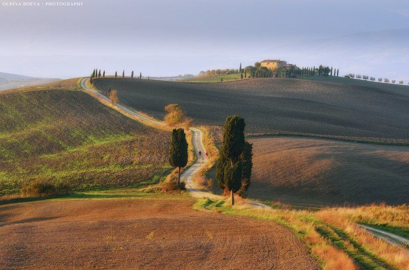 Тоскана, осень, поля, Италия, Italy, Tuscany, autumn, fields Осеннее утро в Тосканеphoto preview