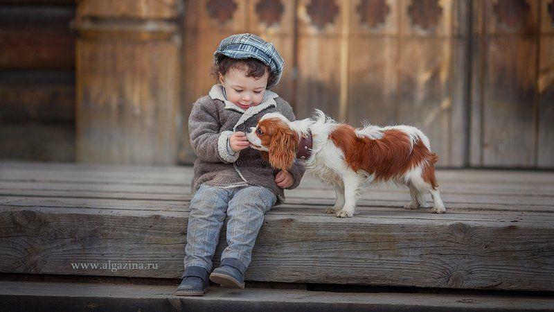 мальчик дети ребенок малыш собака щенок Знакомствоphoto preview