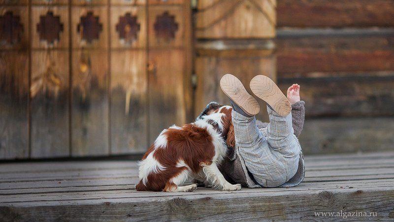 мальчик дети ребенок малыш собака щенок Друзья продолжениеphoto preview