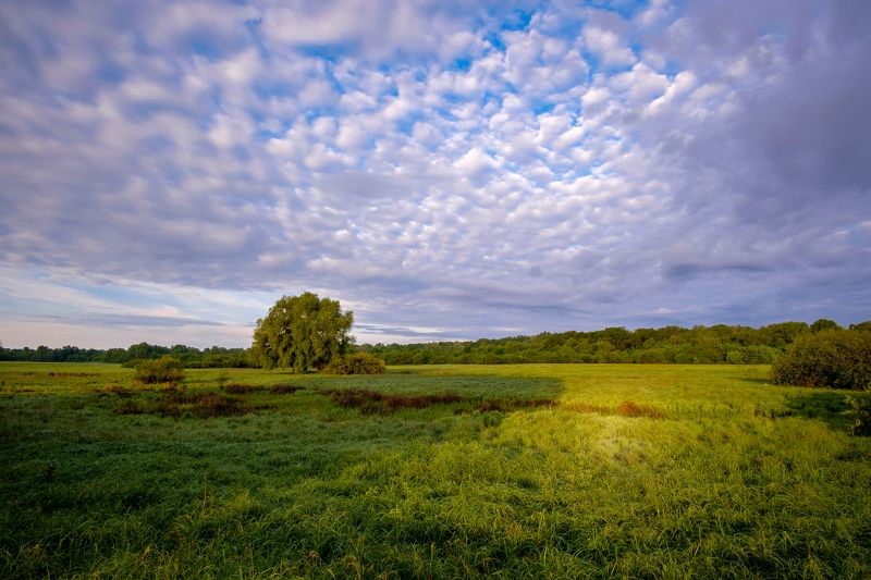 пейзаж, река, утро, природа, рассвет, nature, landscape, sunrise, sky, clouds Ранним утром на лугу...photo preview