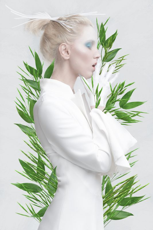 BLEAСHED PLANTphoto preview
