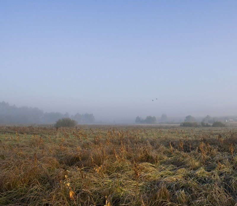 осень, утро, туман утроphoto preview