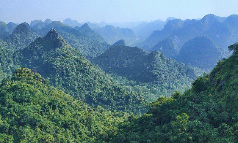 вьетнам, ха, лонг, пейзаж Долина холмовphoto preview