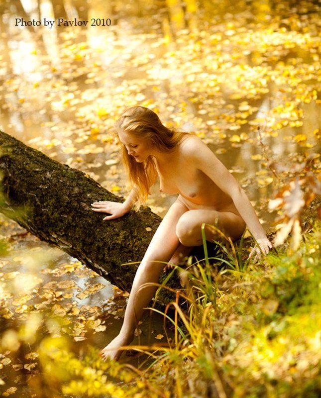 старый, пруд, ..., осень, nu, модель_лена Старый пруд ... Осеньphoto preview