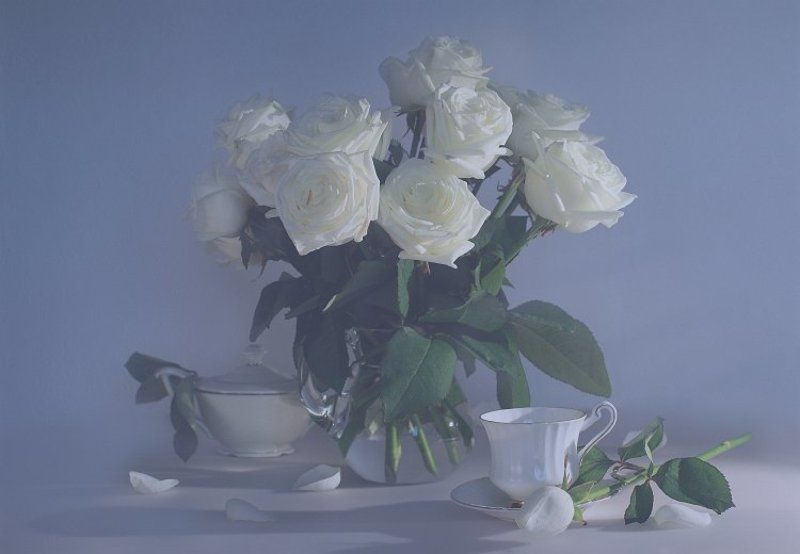 белые, розы, фото, натюрморт белые розы 2photo preview