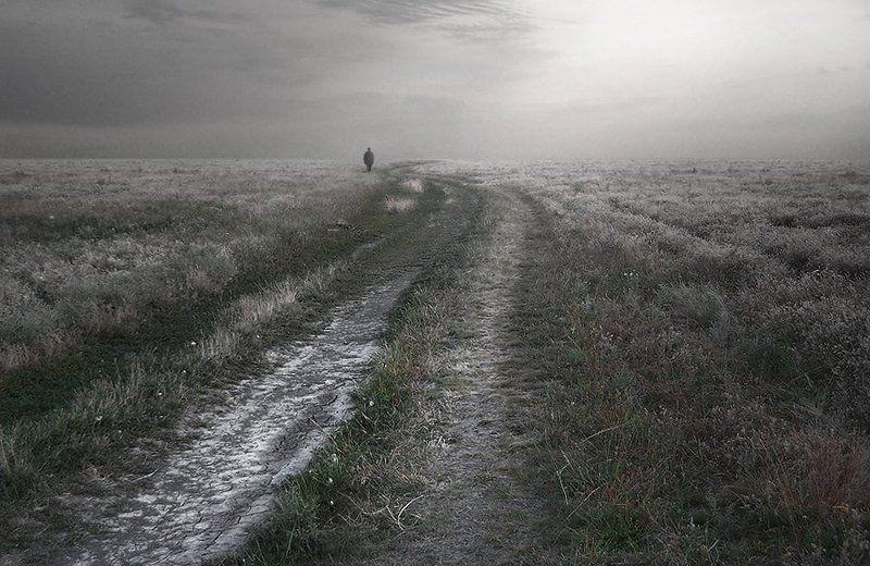 Не пылит дорога, не дрожат листы....photo preview