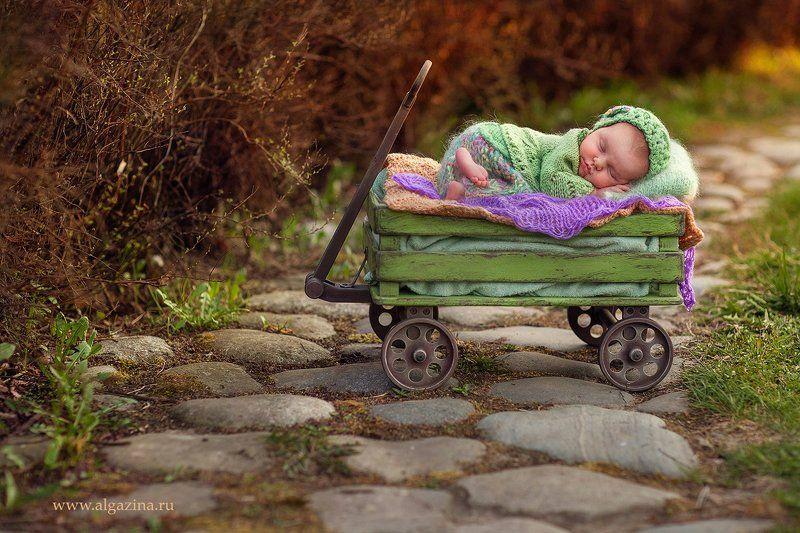 новорожденный младенец дети малыш детская фотография newborn baby babygirl На природеphoto preview