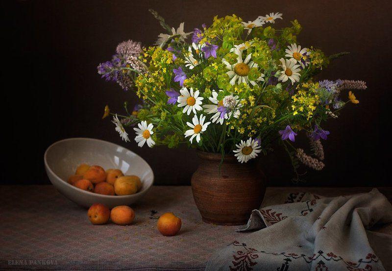 полевые цветы, абрикосы, июнь ***photo preview