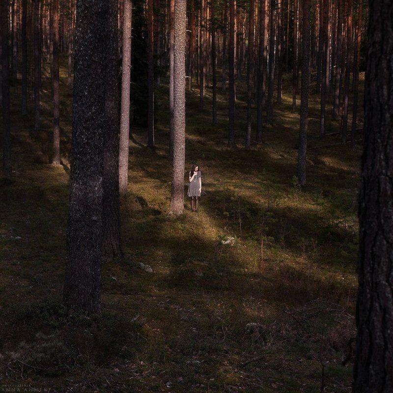 портрет, женский портрет, природа, forest, пленер, девушка, woman, nature, лес, portrait Сосныphoto preview