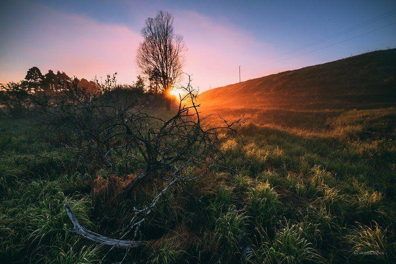 утро Рассветный часphoto preview