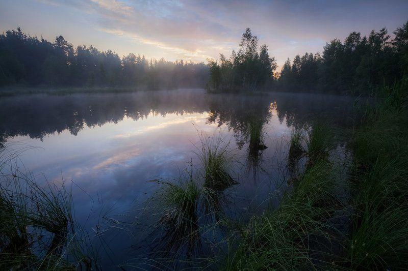 утро, лето, озеро, тишина, природа, благодать Пробуждение от снаphoto preview