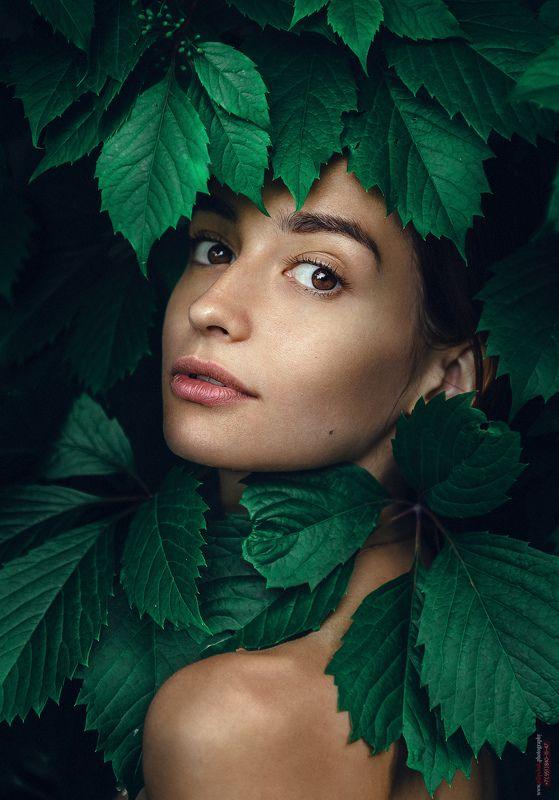 девушка, портрет, фото девушки, девушка в листве, взгляд девушки Лераphoto preview