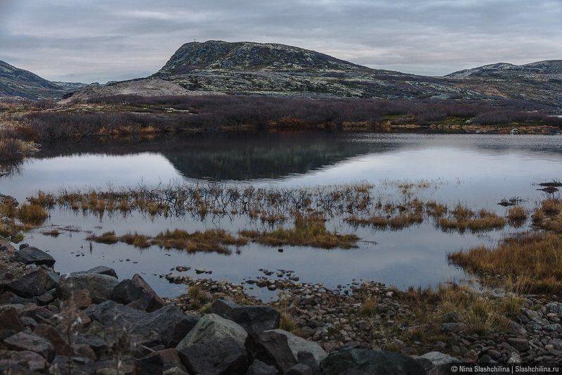 север,осень,пейзаж,кольский, горы, териберка, россия Поздняя осеньphoto preview