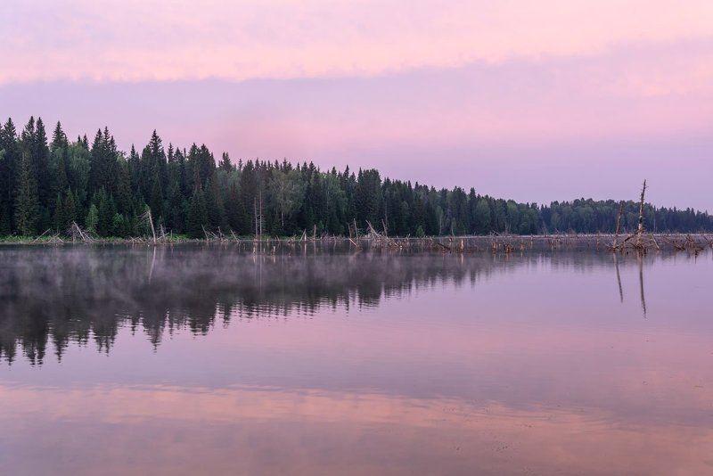 озеро, рассвет, розовый, отражения, lake, dawn, pink, reflections Рассветphoto preview