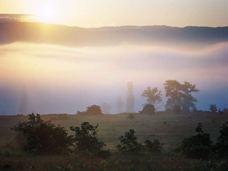 восход Восходphoto preview
