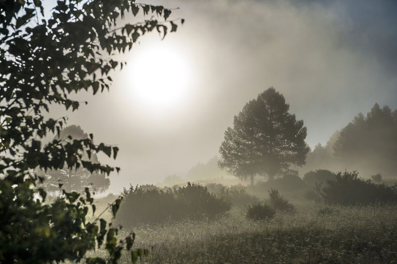 туман, пейзаж, горы, южный Урал, солнце Туманphoto preview