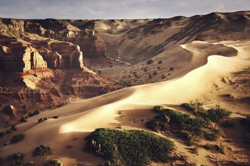 Зной жаркой пустыни и пески Южной Гобиphoto preview