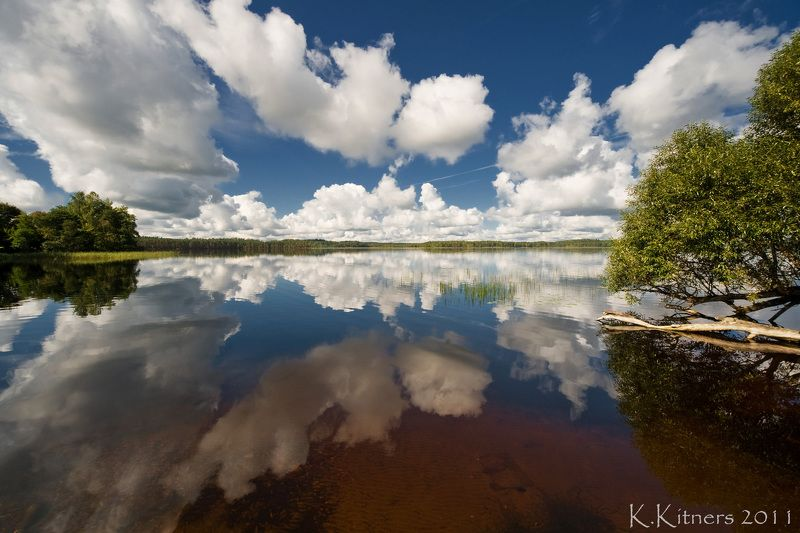 lake tree forest sky clouds water reflection summer latvia Reflections On The Lakephoto preview