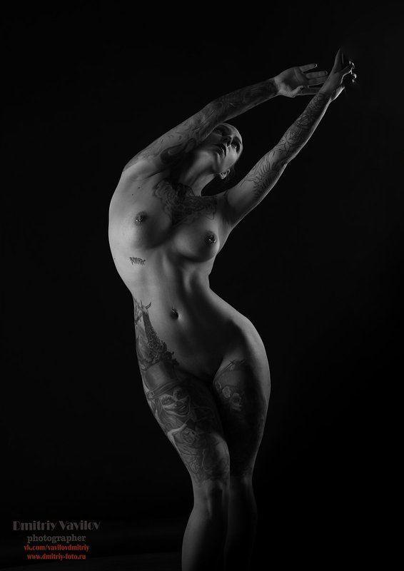 ню, эротика, art_vavilov, Контурыphoto preview