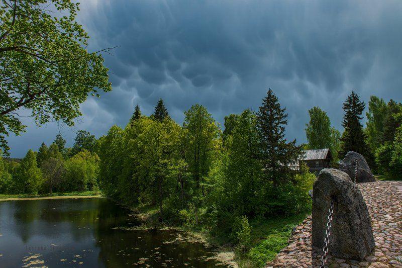 Mammatus cloudsphoto preview