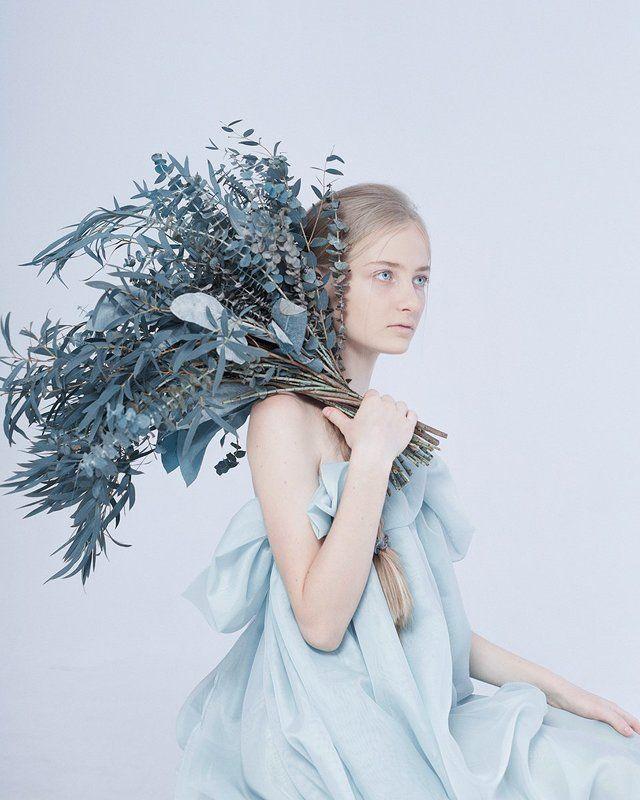 эвкалипт, цветы, синий, голубой, девушка, студия, портрет photo preview