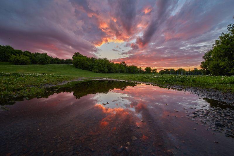 закат, парк, отражение, лужа, свет, красота, Коломенское  Просто лужа в паркеphoto preview