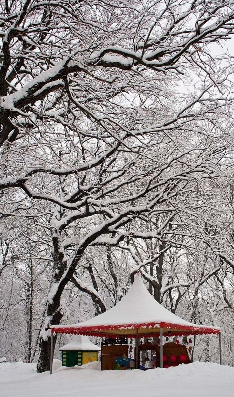 зима, парк, снег Снежное царствоphoto preview