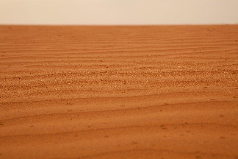 сахара, пустыня, марокко Ливень в Сахареphoto preview